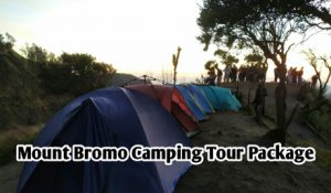 Mount Bromo Camping Tour Package